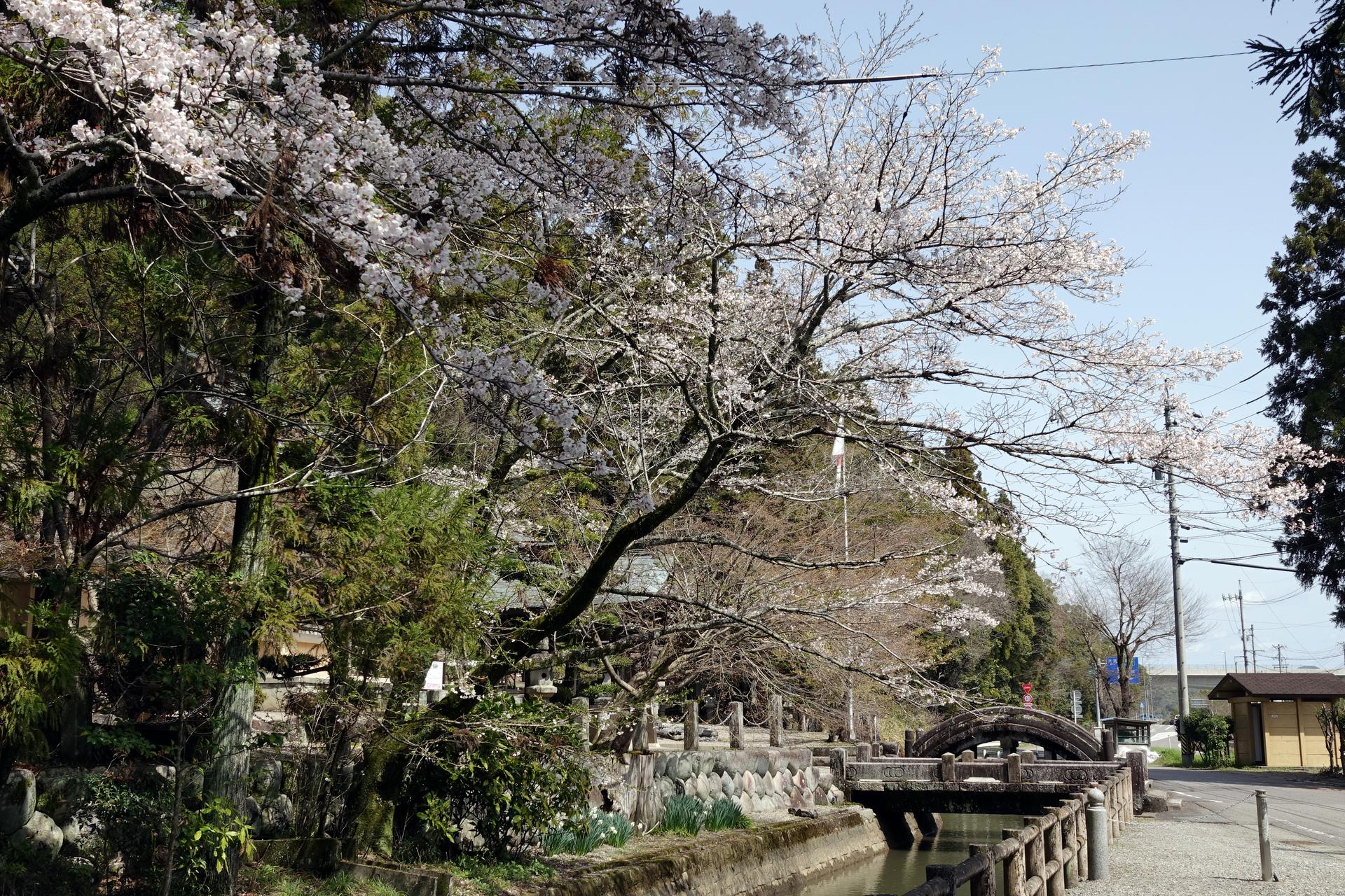 DSC09264三輪神社.JPG